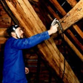 Entreprise traitement du bois à Territet